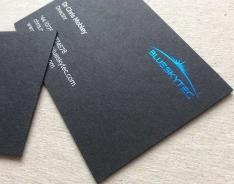 Blueskytec business card