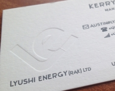Lyushi Energy Business Cards