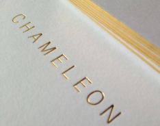chameleon gold foiled thick white business card with gold edge/gilt